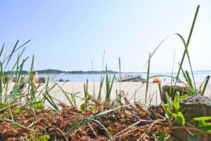 Eckernförde: Nah am Wasser gebaut