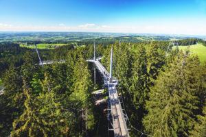 Allgäu: Der Wald als Erlebnis