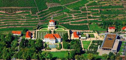 Schloss Wackerbarth: Trank der Götter in Sachsen schmecken
