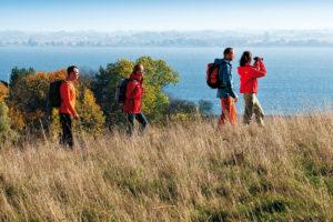Goldener Herbst für Naturliebhaber in Mecklenburg-Vorpommern
